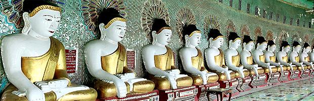 sıra sıra dizilmiş buda heykelleri